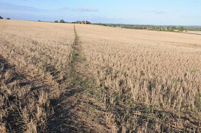 Footpath to Kinnersley