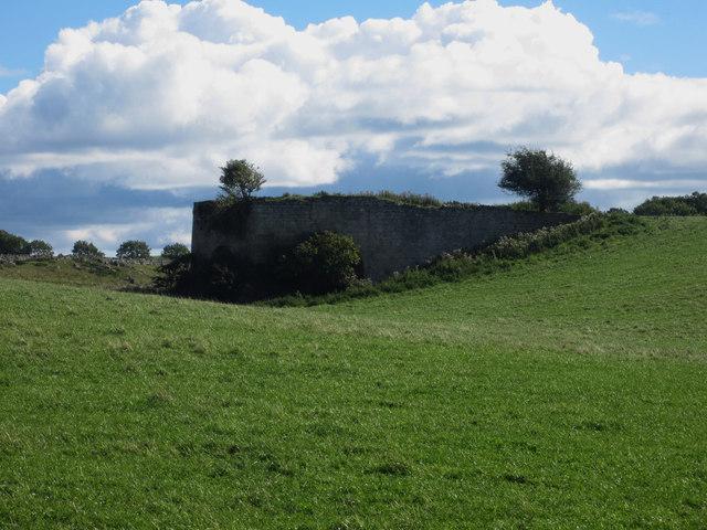 Limekilns near Spindlestone Heughs