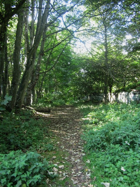Footpath through woodland at Spindlestone Heughs