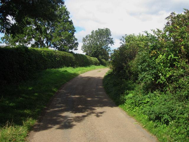 Country road near Waren Caravan Park
