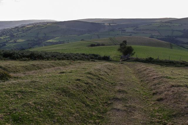 Moorland near Cregrina, Powys