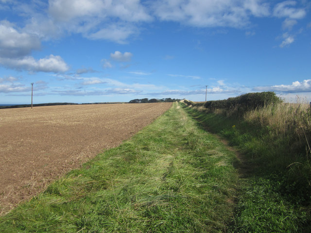 Public footpath towards Bamburgh