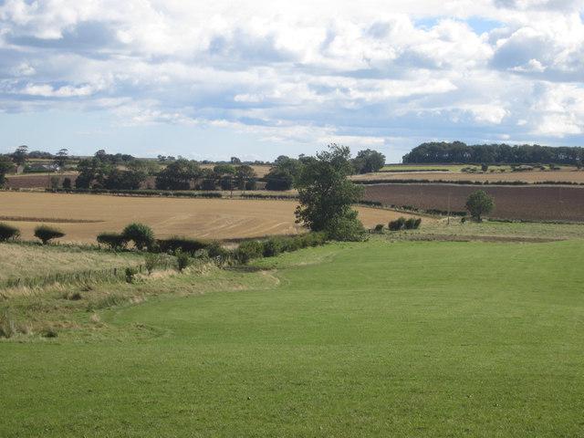 Farmland north west of Dukesfield