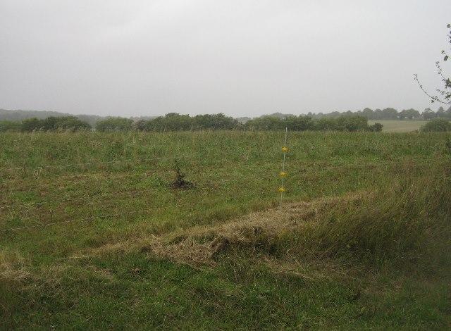 Farmland south of Ibworth