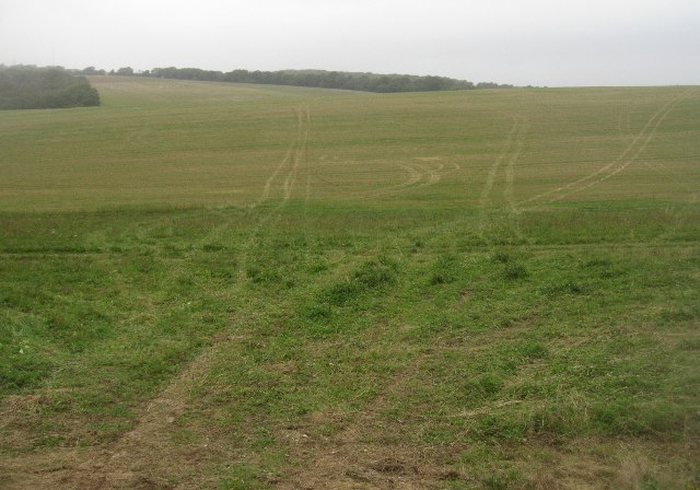 Tractor trails - Hampshire Downs