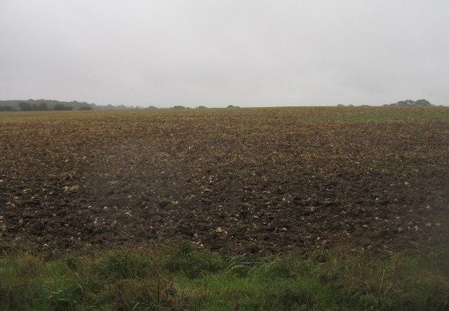Farmland south of Freemantle Farm
