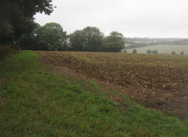 Farmland north of Freemantle Farm