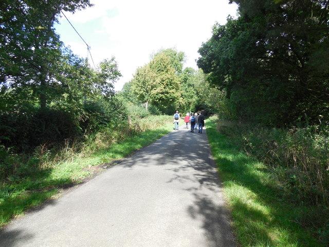 Foxhole Lane