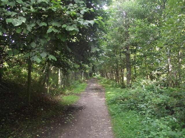 Deeside Way uses the former trackbed of the Deeside Railway