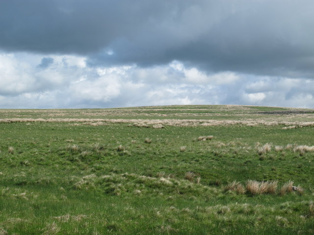 Moorland north of Dudlees