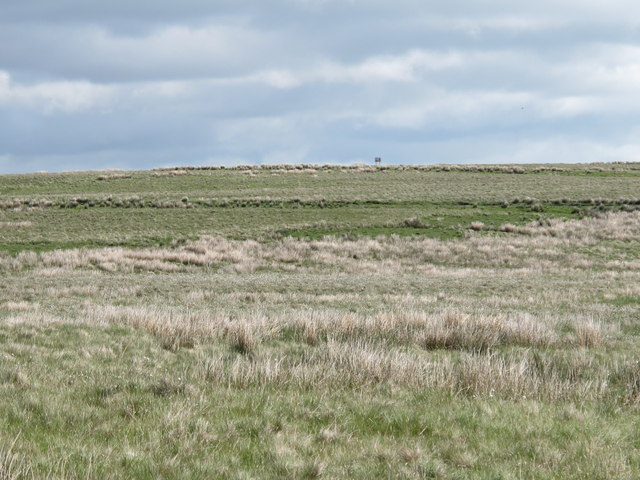 Moorland south of the Crow Stone