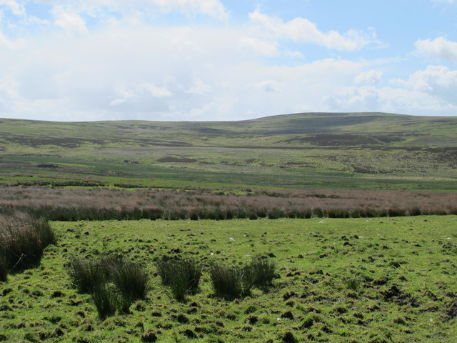 Moorland northwest of Greenwood Law