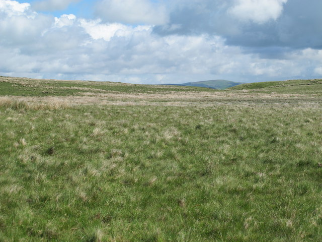 Moorland south of the Crow Stone (2)