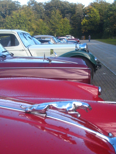 A line-up of classic British cars at Buckland Abbey