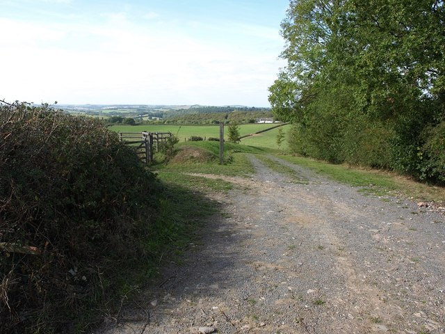 The track to Cotley Kiln
