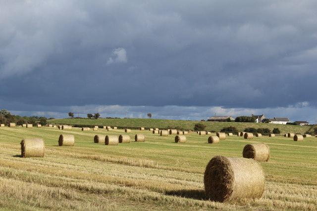 Straw bales & view towards West Plann