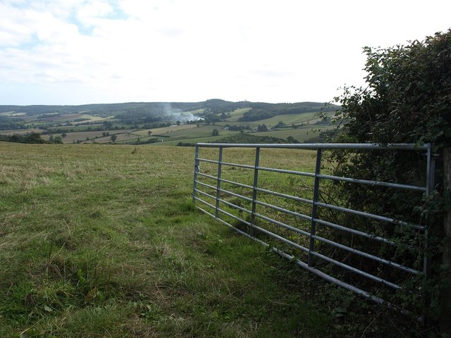 Grazing field south of Cuckoo Green