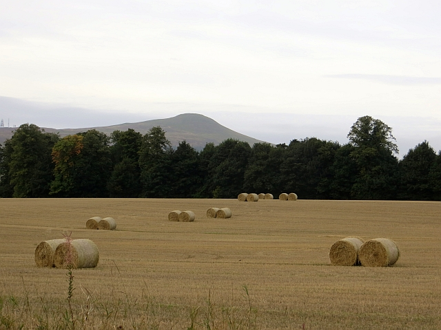 Round bales, Easter Lathrisk