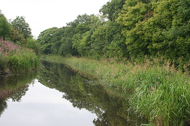 Union Canal from Bridge 51