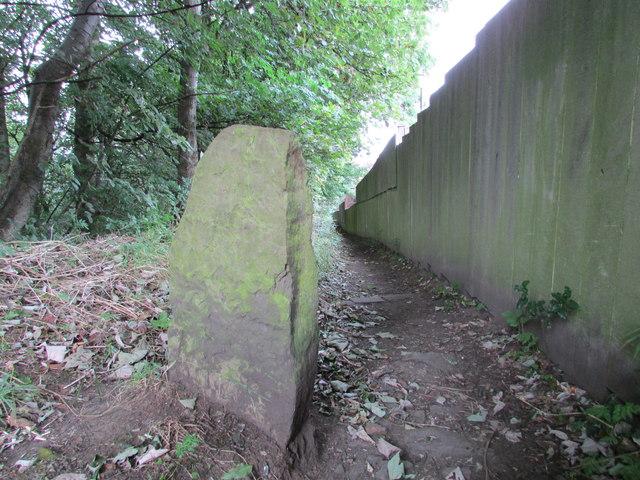 Footpath, Penny Spring Wood