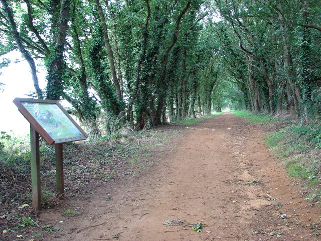 Mariott's Way by Freeland Corner