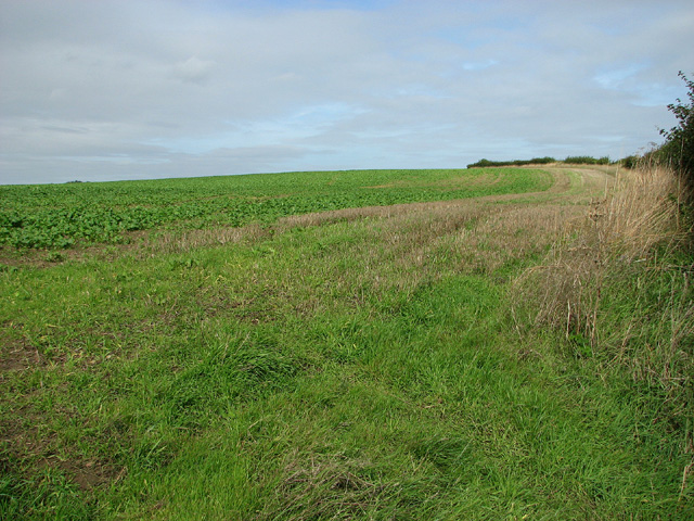 Field north of Briston Road