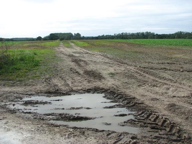 Fields north of Briston Road