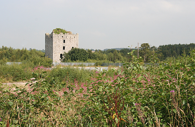 Almond or Haining Castle