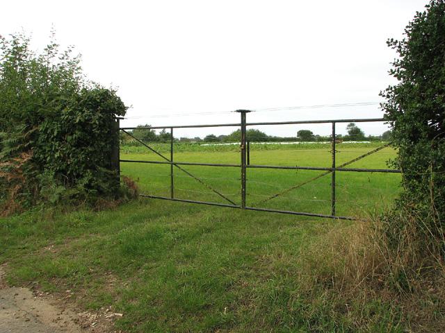 Field gate on Chapel Hill