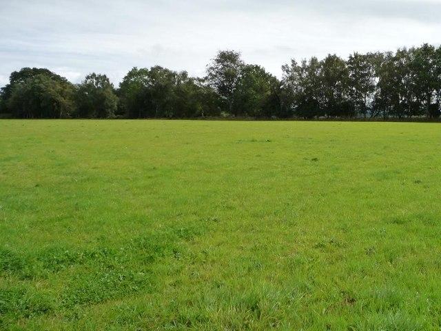 Farmland north of Llan Lane