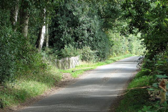 Minor road past Little Wood
