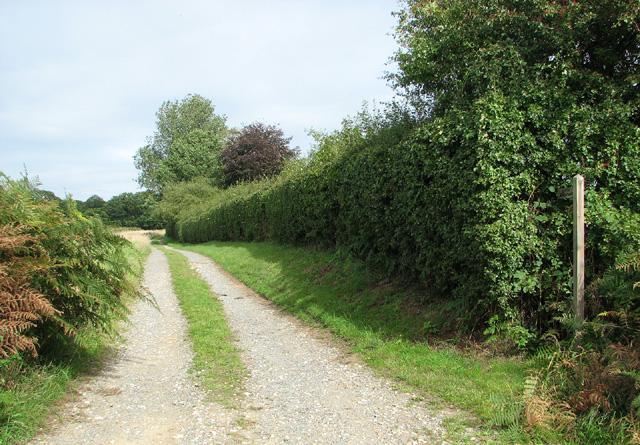Footpath to Underwoods