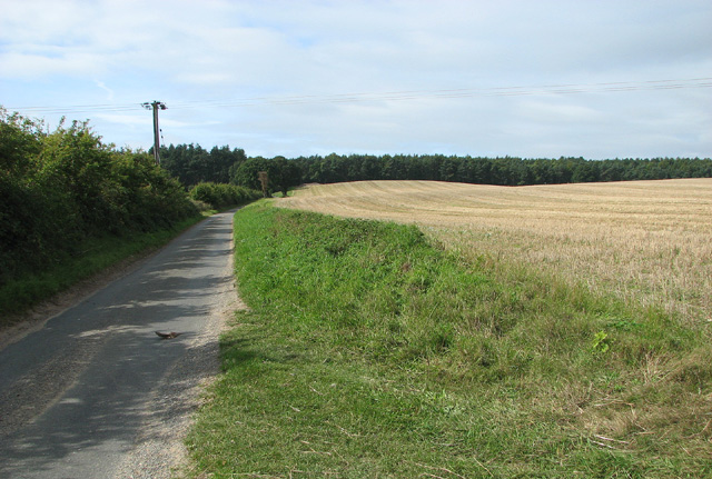 Stubble field east of Birch Hole Plantation