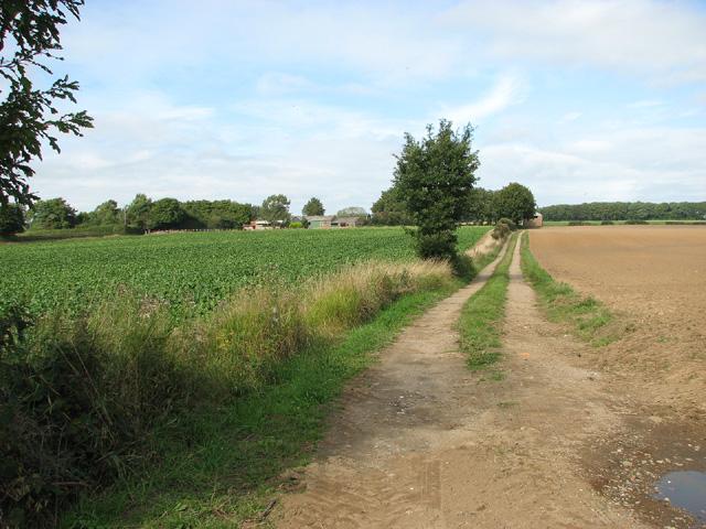Track to Wood Farm, Edgefield