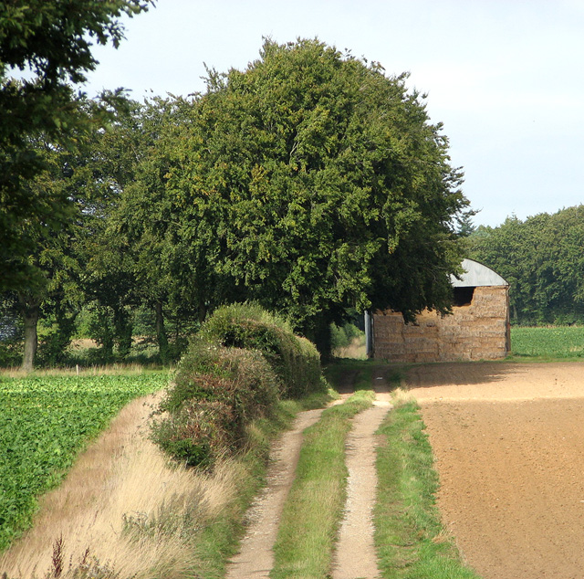 Dutch barn by Wood Farm