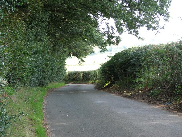Lane past Little Wood