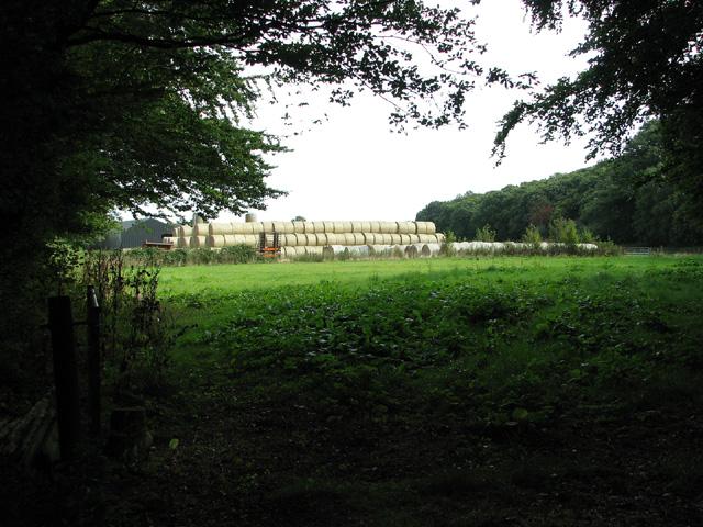 Straw bales by Range Farm