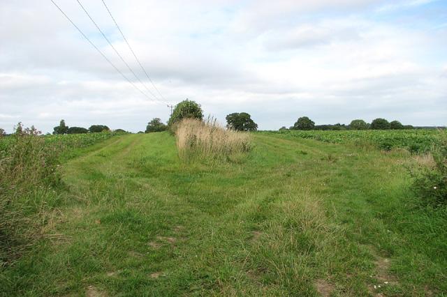 Fields by Plumstead Green