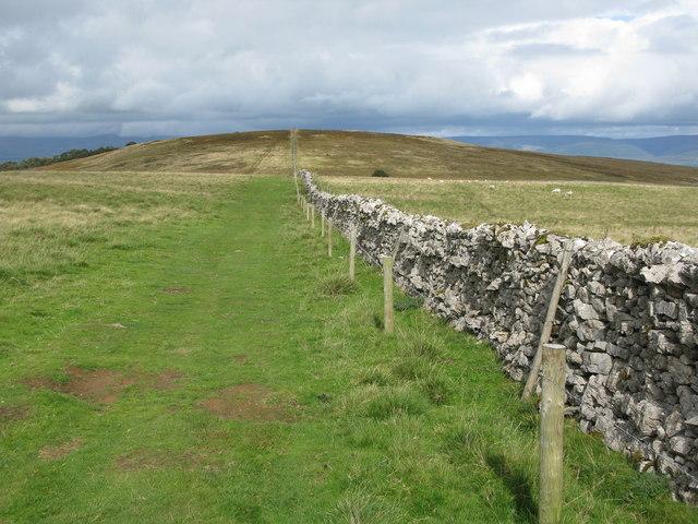 Path on Gaythorne Plain