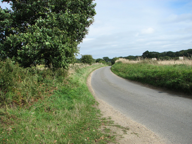 Bend in rural lane