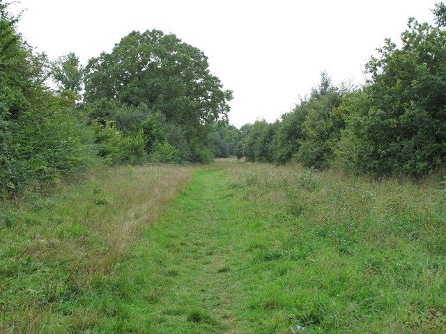 Path through Crowsheath Community Woodland, Downham