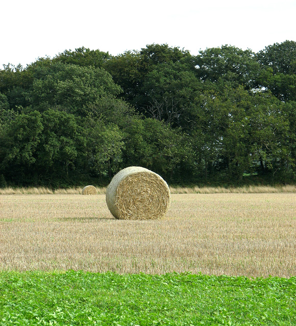 Two straw bales by the Belt
