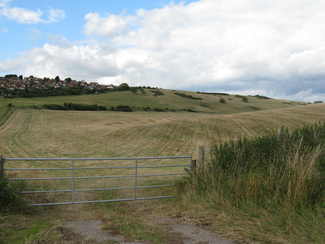 View across Pea Down from East Dean