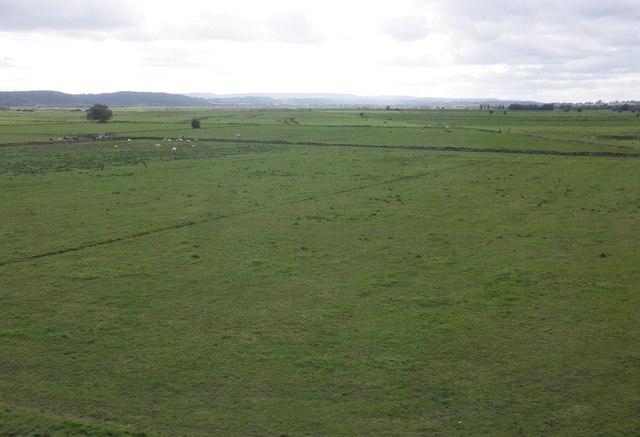 West Sedge Moor