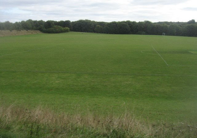 Playing fields - Basingstoke Common