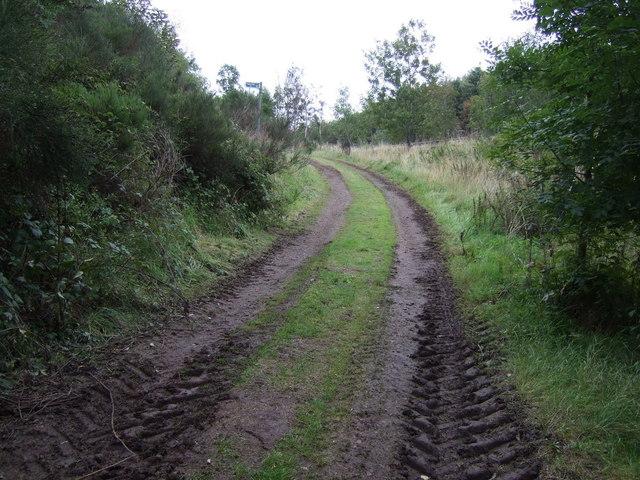 Farm track beside the A1