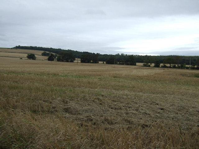 Farmland, Crookston