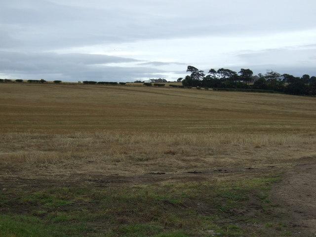Farmland, West Mains