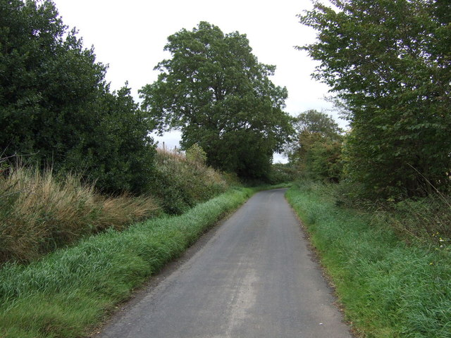 Country road near West Mains