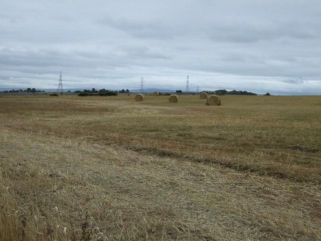 Farmland near West Mains